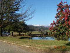 Cordillera de los Andes by <b>Aurea Barrera</b> ( a Panoramio image )