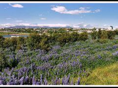 Kopavogur Iceland - ?a? er gott a? bua i Kopavogi by <b>Sig Holm</b> ( a Panoramio image )
