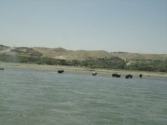 Sayad River, Kapisa 2 by <b>Abdul Raqib</b> ( a Panoramio image )