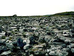 The Burren by <b>Henk van Es</b> ( a Panoramio image )