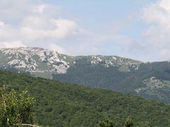 Munte by <b>Adrian Bancu</b> ( a Panoramio image )