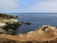 Gold Fish Point, La Jolla, California by <b>davidcmc58</b> ( a Panoramio image )