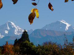 mb - Moench & Jungfrau im Herbst by <b>? Swissmay</b> ( a Panoramio image )