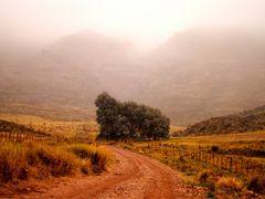 niebla...villa ventana by <b>celinacastellar</b> ( a Panoramio image )