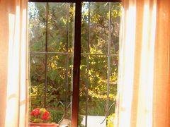 Grace en la ventana by <b>Mayte Ruiz</b> ( a Panoramio image )
