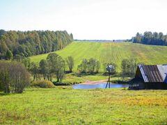 Осень. Поле. Озимые. by <b>Belova Galina</b> ( a Panoramio image )