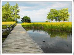 Eine friedliche Naturidylle im Sonnenschein by <b>Stevia</b> ( a Panoramio image )