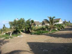 Hotel Cactus by <b>yoman000</b> ( a Panoramio image )