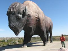 Giant Buffalo, Jamestown, ND. by <b>OEBarker</b> ( a Panoramio image )