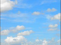 Kinderdijk: more than mills... by <b>Pontecaffaro</b> ( a Panoramio image )