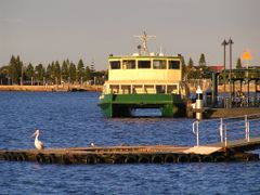 Stockton Ferry - Newcastle Ferry Wharf by <b>Andrew Wilson</b> ( a Panoramio image )
