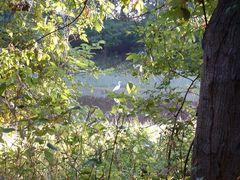 Fall2005 012 by <b>b-ryd</b> ( a Panoramio image )