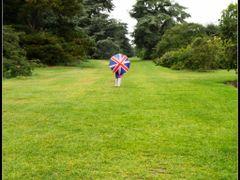 English path - Kew Garden by <b>vdaniel</b> ( a Panoramio image )