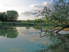 The Village Pond  --- Lovely View !! by <b>Mansoor Goheer</b> ( a Panoramio image )