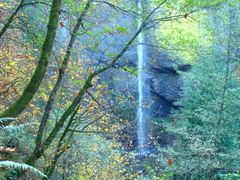 Latourell Falls by <b>DeEtte Fisher</b> ( a Panoramio image )
