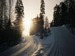 laajavuori, maaliskuussa 2001 (03/01)  by <b>matkustava_kissa</b> ( a Panoramio image )