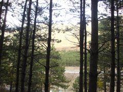 Bredhishte by <b>Neim Sejfuli ?</b> ( a Panoramio image )