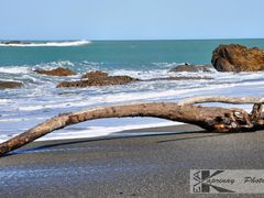 Only a driftwood... by <b>Eva Kaprinay</b> ( a Panoramio image )