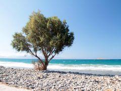 Beach at Ierapetra by <b>pablowhitt</b> ( a Panoramio image )