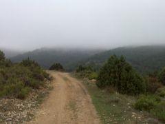 camino by <b>nucerman</b> ( a Panoramio image )