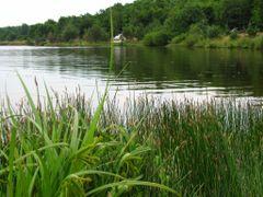Озеро біля с. Оселя 7 by <b>stasrock</b> ( a Panoramio image )
