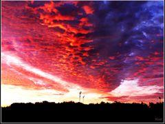 *The Sunrise - Burning Sky* - A by <b>ka9894</b> ( a Panoramio image )