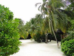 Interior de la isla, en Baros. by <b>Madame X</b> ( a Panoramio image )