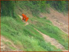 Orange and green in Laos by <b>Tomros</b> ( a Panoramio image )