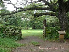 Corrales  de   La Casona, Parque Nacional Santa Rosa, Guanacaste by <b>Melsen Felipe</b> ( a Panoramio image )