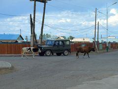 MONGOLIA 2011 - Ulaangom by <b>rzepek</b> ( a Panoramio image )