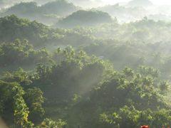 ?Misty Forest ~Bohol Island~? by <b>Без названия</b> ( a Panoramio image )