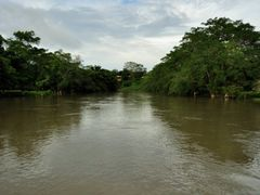 Macal River in San Ignacio by <b>ddarbela</b> ( a Panoramio image )