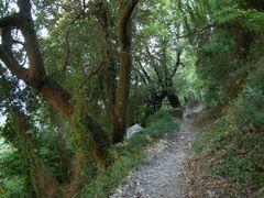 Без названия by <b>Fotis Tentolouris</b> ( a Panoramio image )