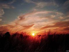 EVENING MOOD by <b>roymonotosh</b> ( a Panoramio image )