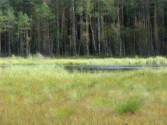 почти не осталось воды by <b>alinco_fan</b> ( a Panoramio image )