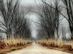 """Desolacion Infinita"" by <b>fernandamurillo</b> ( a Panoramio image )"