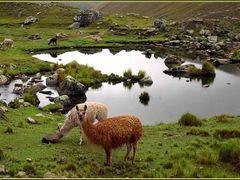 Serenidad by <b>Jaime Caviedes</b> ( a Panoramio image )