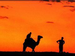 Durch die Sahara mit dem Kamel by <b>olafju</b> ( a Panoramio image )