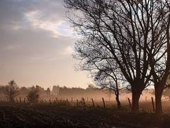 good morning! by <b>~Nomad~</b> ( a Panoramio image )