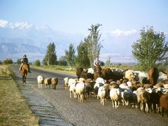 Rural Kyrgyzstan by <b>deglobalnomad</b> ( a Panoramio image )