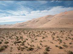 Хонгорын-элс, высота песков 300 м by <b>nub1an</b> ( a Panoramio image )