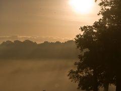 Richmond Deer by <b>Mark Simms</b> ( a Panoramio image )