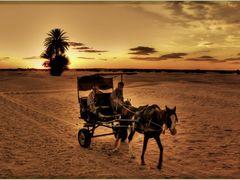 Durch die Sahara by <b>olafju</b> ( a Panoramio image )