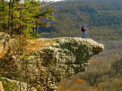 #82 Hawksbill Crag - USA by <b>Geezer Vz</b> ( a Panoramio image )