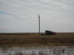 Жатва пшеницы несмотря на снег (Wheat harvest continues despite  by <b>SemenovEA</b> ( a Panoramio image )