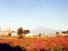 Le volcan Popocatepelt vu de la villa archeologique de Cholula p by <b>gegedeversailles</b> ( a Panoramio image )