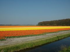 Nederland by <b>Laszlo Pazar</b> ( a Panoramio image )