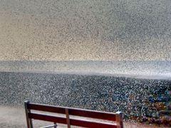 Moja2 by <b>NO VIEWS  NAJI</b> ( a Panoramio image )