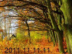 2011 11 11 11 11 11 - KABATY - Wojciech Noworyta by <b>Wojciech Noworyta</b> ( a Panoramio image )
