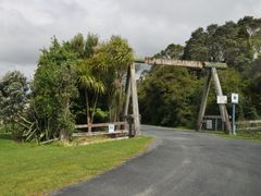 Parry Kauri Park by <b>Sincere Photo</b> ( a Panoramio image )